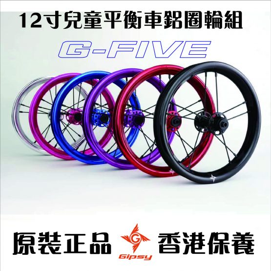 GIPSY 12寸輪組G-FIVE G5平衡車改裝輪組(一對)
